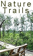 new orleans north shore nature trails